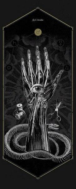 Анатомия греха Лючиано Корти Эта коллекция рисунков опирается на иллюстрации из старинных книг по анатомии, ботанике и зоологии, с целью объединить символы и традиции разных культур, связанные с