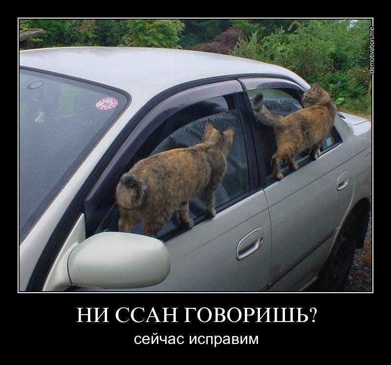 Лучший хостинг для лендинга в россии была
