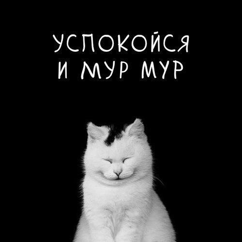 Анастасия Шпагина |