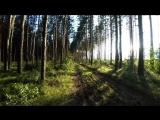 Прогулка по лесу [ by Goocher ]
