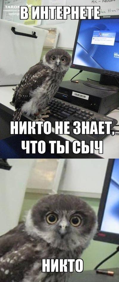 Эрнест Лищенко, 20 сентября 1991, Омск, id20905366