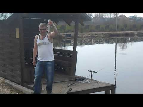 17.04.2018 на Форелевых водоёмах рыбхоза Гжелка