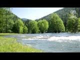 река Бия. Автор Михаил Фоминых