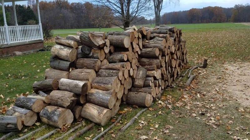 Firewood Production...Green Oak