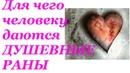 Для чего человеку даются душевные раны Николай Пейчев