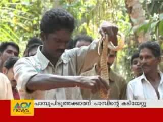 Cobra attacks Vava Suresh (Live visuals) - ����� ����� ���� ������