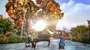 Avatar in Real Life! - The Piano Guys in Disney World (Official Music Video)
