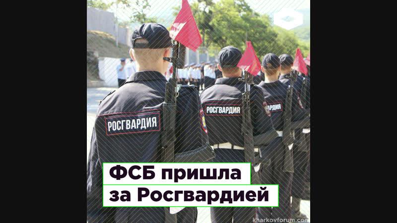 ФАС по просьбе ФСБ возбудила уголовное дело против поставщика Росгвардии | ROMB