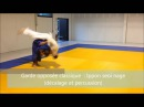 Morote seoi nage variations (Partie 2)