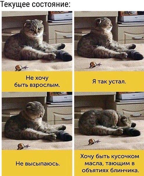 Фото №456258169 со страницы Ульяны Дудниковой
