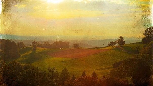 Раскраски с осенней тематикой пейзаж