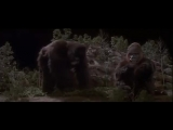 King Kong vive (1986) lat.