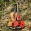 Екатерина Цветаева Эстрадная скрипка