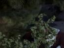 Моя жена меня приворожила - Bewitched сериал - 4 сезон, 12 серия смотреть онлайн - kadu - Красвью_1