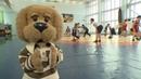 Борьба - Быстрее, выше, сильнее! Вместе с Хрюшей и (Выпуск 3) Детям о спорте