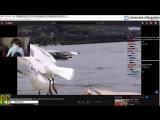 [Реакции Братишкина] Братишкин смотрит: Топ Моменты с Twitch | СХС на Радио | Озон Гачибасит | Танос в Фортнайте