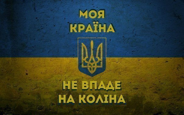 Активисты создали сквер на месте скандальной стройки в Киеве - Цензор.НЕТ 5200