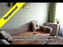 Продаётся двухкомнатная квартира в районе школы №2 в ст Брюховецкая Краснодарский край