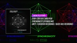 Ferry Corsten &amp Saad Ayub - Synchronicity (Extended Mix)
