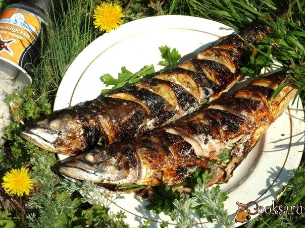 Скумбрия запечённая на мангале с лимоном и зеленью Скумбрия - идеальная рыба для запекания,она всегда получается сочной и вкусной!Предлагаю вам скумбрию запечённую с лимоном и зеленью.