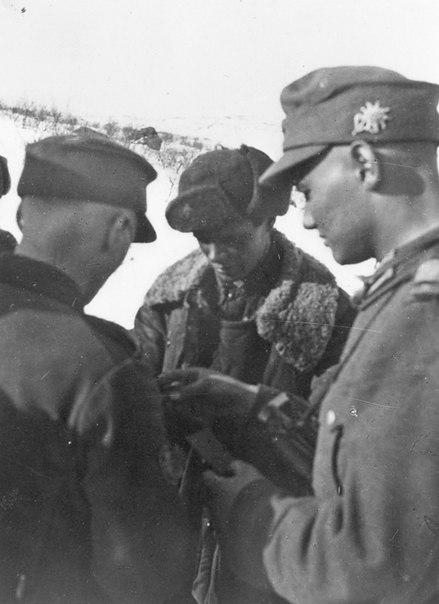 4-я горнострелковая дивизия вермахта (4gebirgs-division)