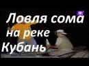 Ловля сома на реке Кубань-Снасти,оснастка,наживка