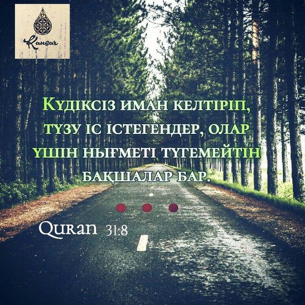 Фото №456239626 со страницы Erbol Tashmatob