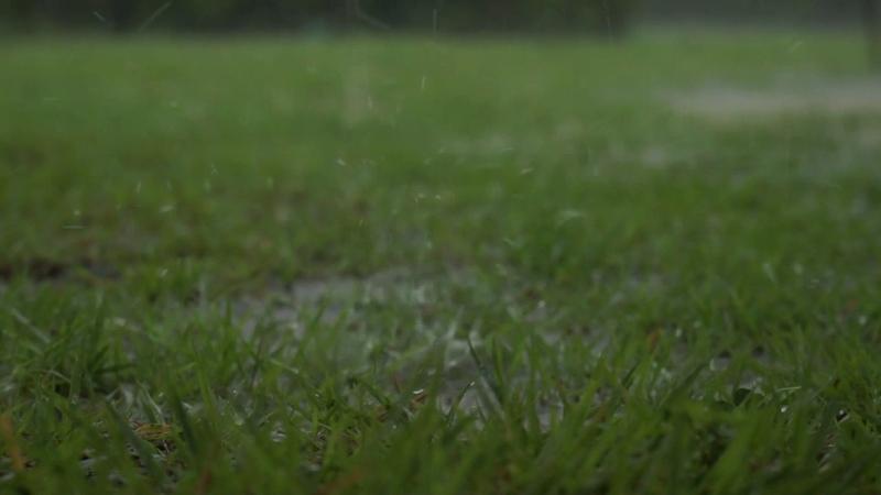 천둥 번개 빗소리 불면증 개선 깊은 수면 rain sounds 1시간