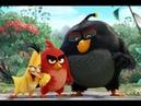 Мурги серёзни Angry Birds Точикишш