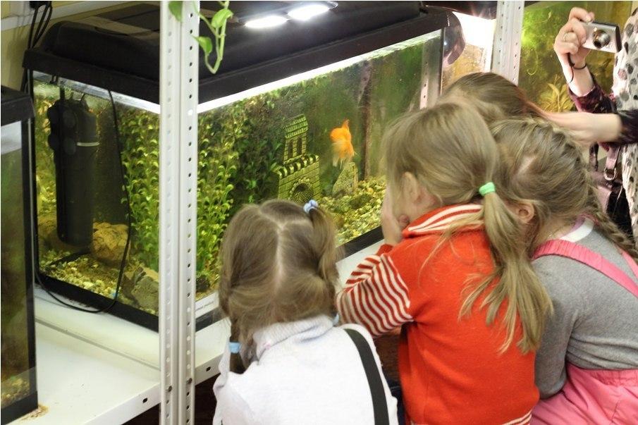День открытых дверей провели на станции юных натуралистов в Савеловском