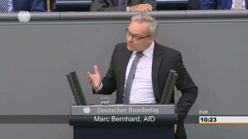 AfD - Marc Bernhard- -Die Kanzlerin der Schmerzen-