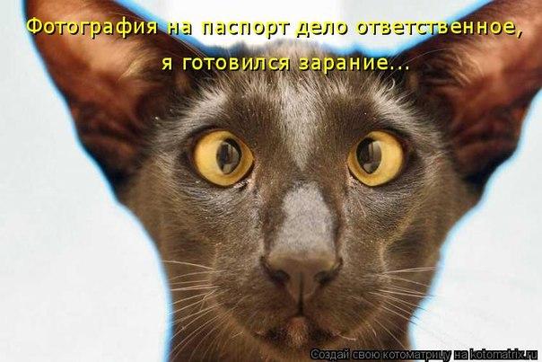 картинки на аву аватарки: