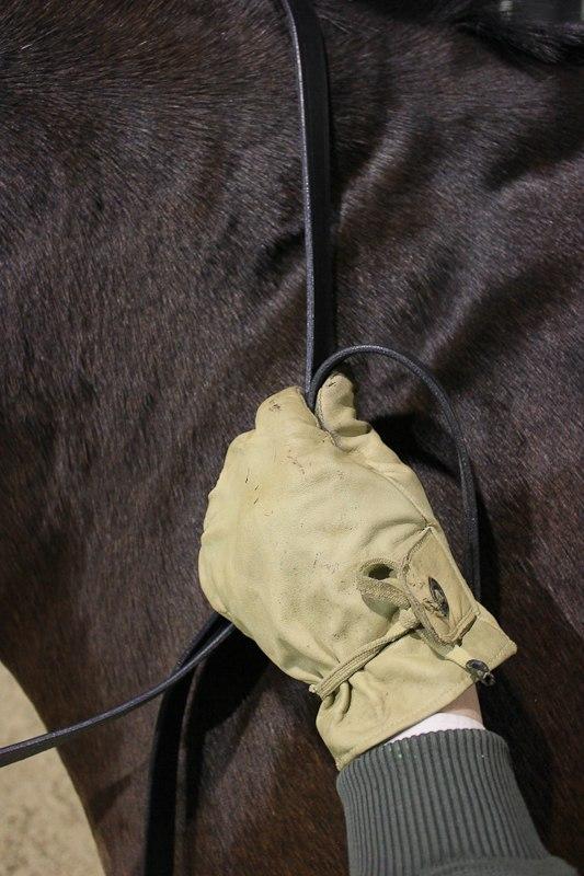 Разбор 2-х поводьев в одну руку, с возможностью управления постановлением лошади  P1bmDteSEvA