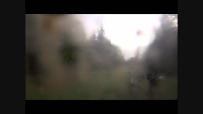Кольцо фортуны 30.09.18 Весёлая упряжка