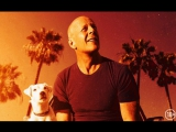 Его собачье дело | В кинотеатрах Тулы с 8 июня