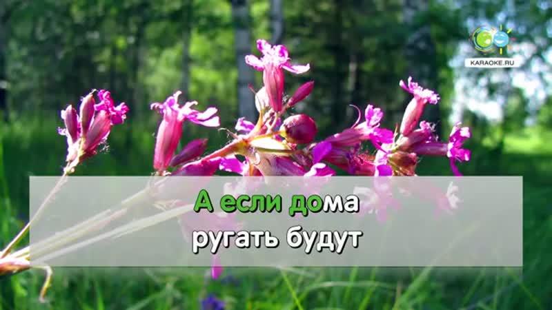 Шумел камыш - Народная (karaoke.ru)