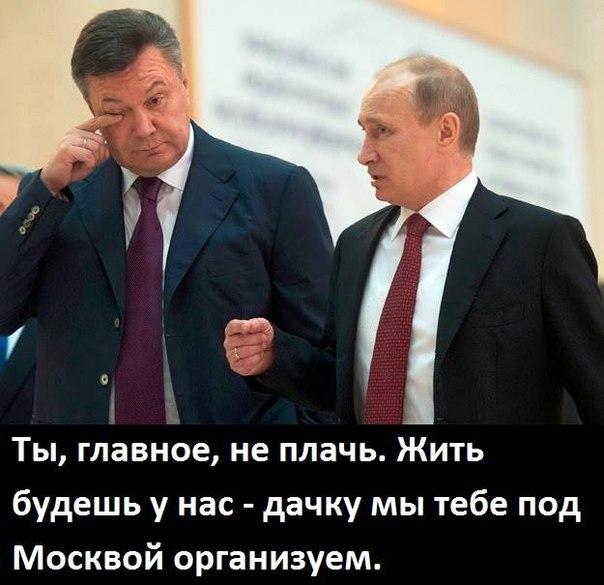 Путин проводит встречу с Януковичем: Мы намерены решить чувствительные вопросы - Цензор.НЕТ 3021