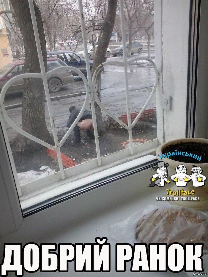 Путин сыграл на скрытых страхах Януковича. У него тогда тряслись и щека, и нога, - Богословская о срыве СА - Цензор.НЕТ 6493