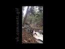 йога над рекой