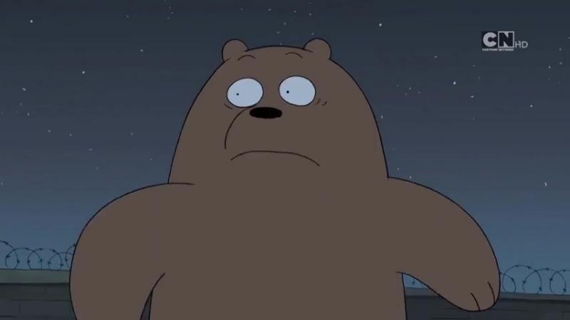 Мы обычные медведи скоро новые серии премьера