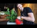 Умные растения которые не надо поливать Горшки с Автополивом