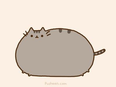 Рисунок жирный кот