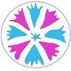 VASILEK - Интернет-магазин натуральной косметики