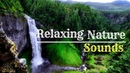 Relaxing Waterfall With Birds Sounds For Study , Sleeping And Meditation 3 hours