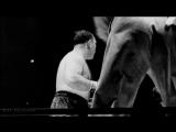 Джо Луис vs Тони Галенто (лучшие моменты) [28.06.1939]