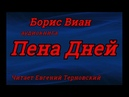 Пена дней - Борис Виан - Аудиокнига: Слушать онлайн