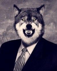 картинка злой волк