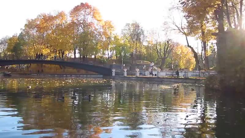 Заплыв по гидропарку в Лопатинскому саду Смоленск