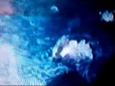 Dax Riggs Radiation Blues