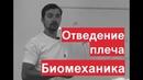 Отведение плеча Биомеханика Разбор мышц движения Александр Пилюгин